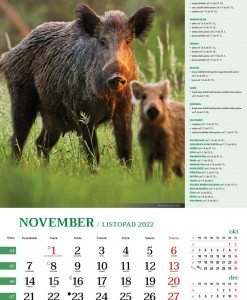 koledar lov